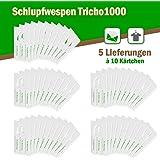 Schlupfwespen gegen Kleidermotten 10 Stück 1000-er Kärtchen x 5 Lieferungen (AKTIONSPACK)