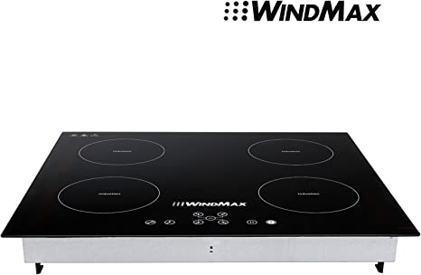 Amazon.com: Windmax Nueva 23 inch 220 V, 6800 W placa de ...