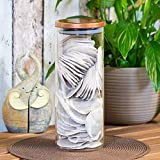 26cm Glass Pasta Storage Canister with Copper Lid