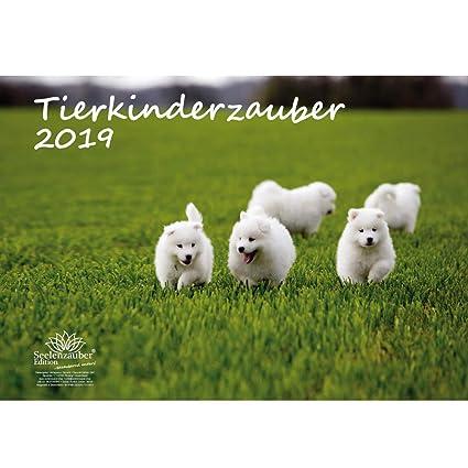 Animales Niños mágica · DIN A3 · Premium Calendario 2019 ...