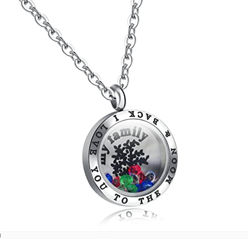 a3cc4b1ae27c5 ANAZOZ Stainless Steel Colorful Cubic Zirconia My Family I Love You ...