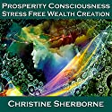 Prosperity Consciousness: Stress Free Wealth Creation Speech by Christine Sherborne Narrated by Christine Sherborne