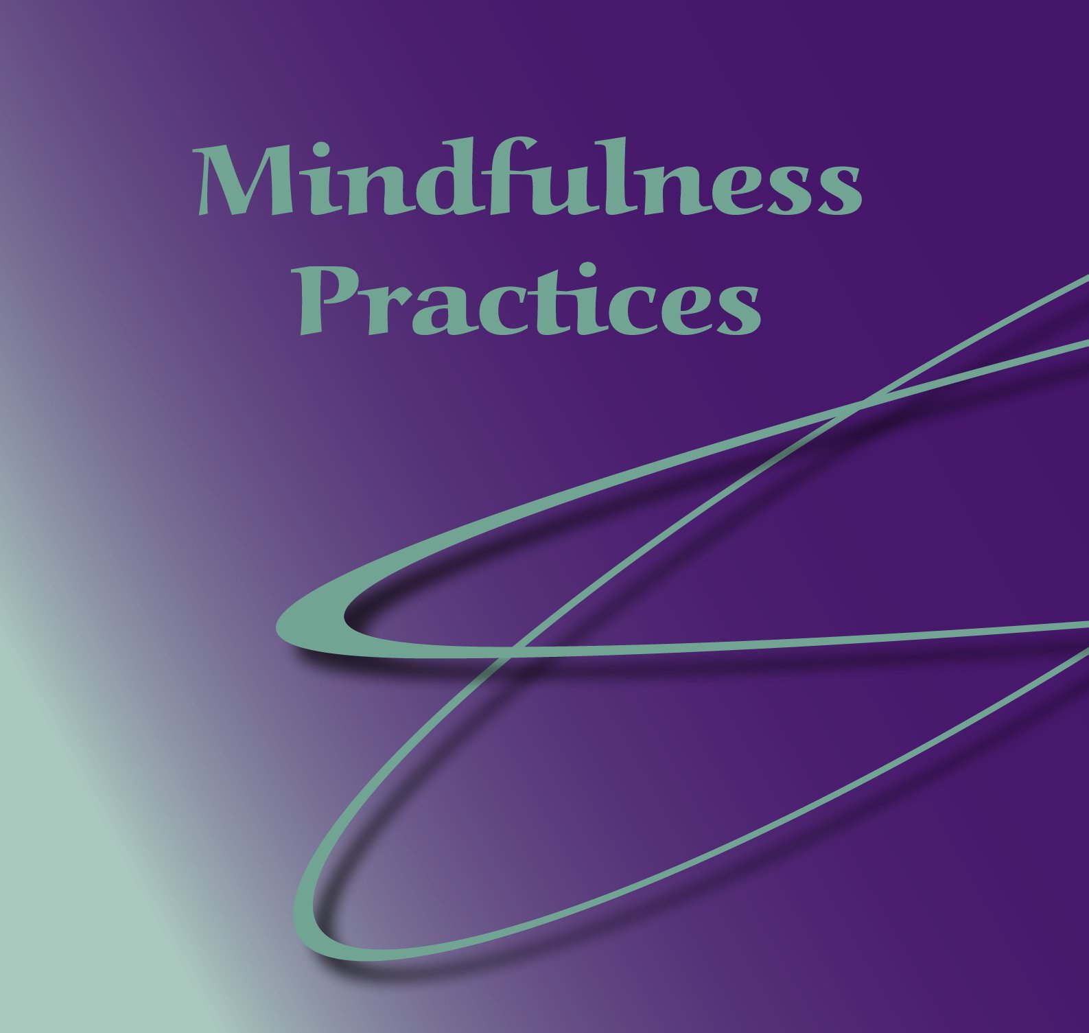 Download Mindfulness Practices PDF Text fb2 book