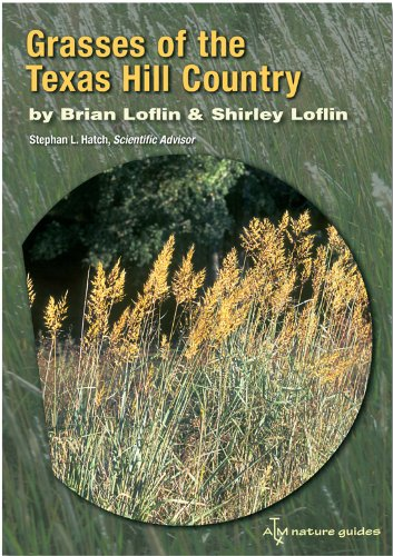 Top 5 grasses of the texas hill country for 2020
