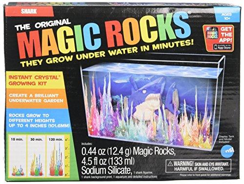 Magic Rocks: Pirate Treasure Chest