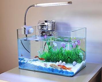 JIANGU Acuario pequeño, rectangular transparente, pecera ecológica, acuario de paisaje pequeño