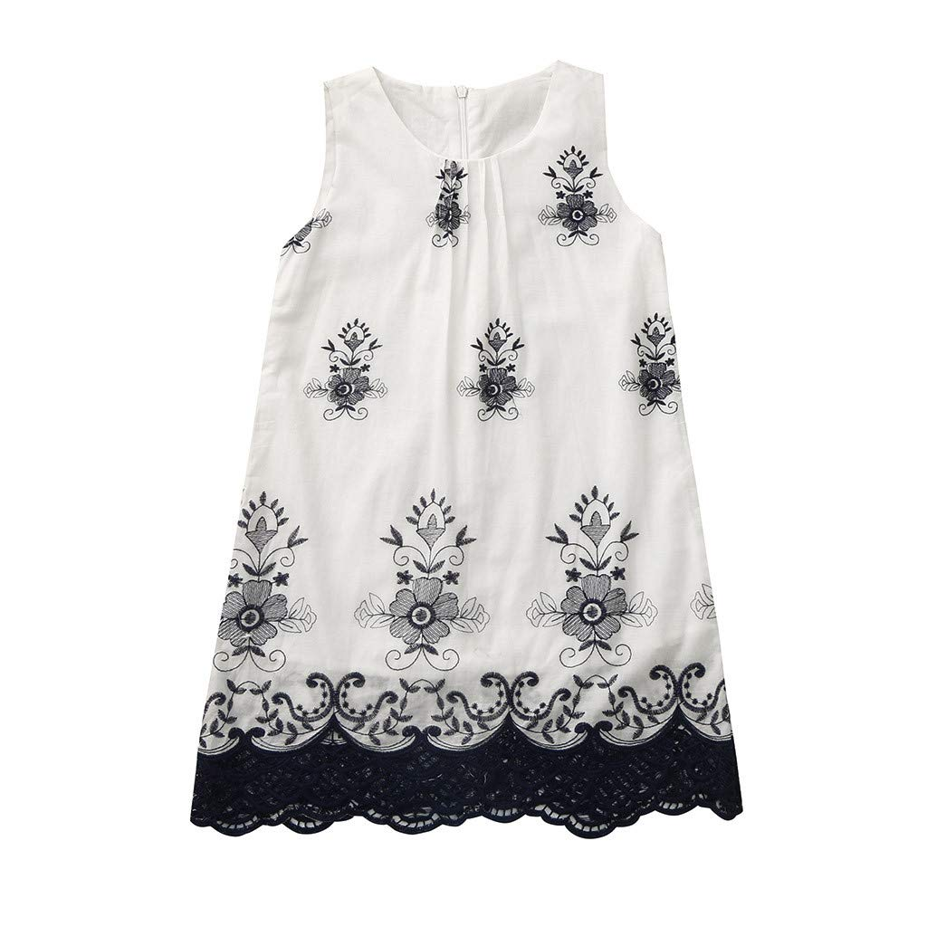 a9fa27a4b6380 Lurryly 2019 Baby Girls Cute Princess Lace Dress Sleeveless Embroidery  Dresses