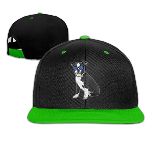 ed479fe4cf0 Lichang Cool Boston Terrier Dog Unisex Adjustable Snapback Hip Hop Hat Dad  Cap