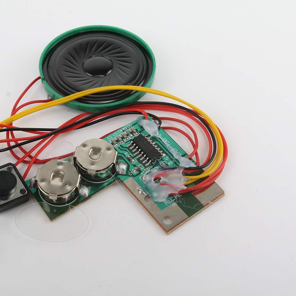 Amazon.com: Aulley - Módulo de voz grabable para tarjeta de ...