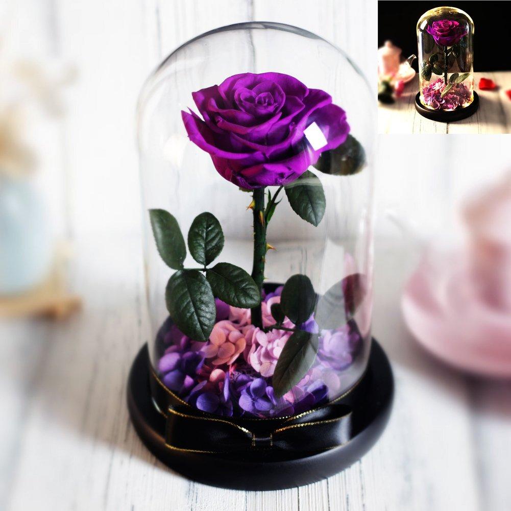 DULPLAY プリザーブドフラワー,プリザーブドフラワー,バレンタインの日, Led ligtht, Diy,透明なガラスカバー,枯れることはありません。 結婚 周年,誕生日 -N 23x15cm(9x6inch) B07CHJ56XX 23x15cm(9x6inch)|N N 23x15cm(9x6inch)