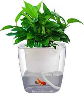 Self Watering Planter Garden, Hydroponics Growing System Flower Pot, Gardening Starter Kit Small Fish Tank, Best Gift Set for Women and Kid, Seeds Not Included, Large Size