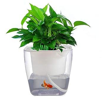 Maceta de riego automático, jardín, sistema de cultivo hidropónico, maceta, kit de
