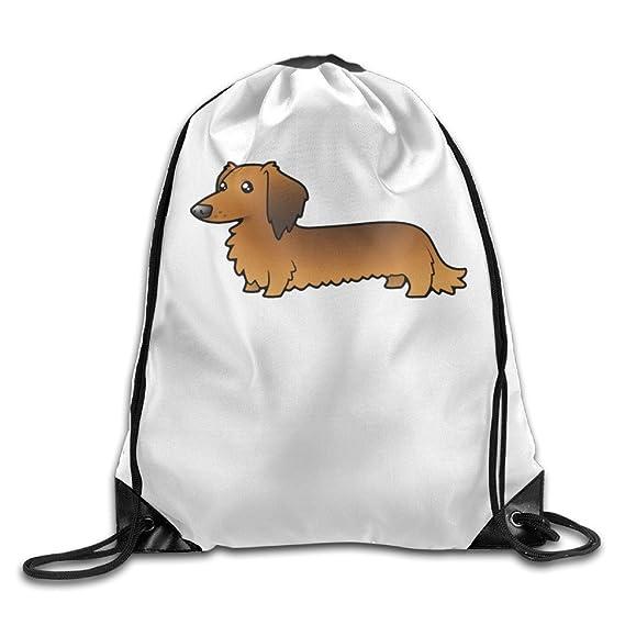 Pelo largo de perro salchicha Cartoon senderismo hombros cordón mochila: Amazon.es: Hogar