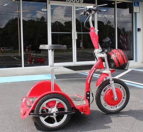 EV Rider Stand-N-Ride Electric Scooter SNR 2013 Generation ()