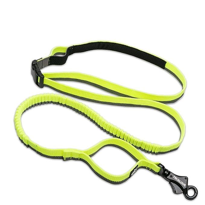 Louvra Guinzaglio Cane da Addestramento Guinzagli Riflessivo Resistente per Cani Di Corsa in Nylon Con Maniglia