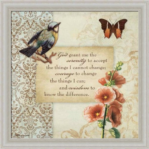Serenity Prayer by Stephanie Marrott Butterfly Bird Vintage Style Framed Art Picture Wall Décor