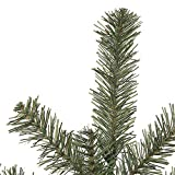 Vickerman A802646 Mini Pine garland with 400 Tips, 9' x 6'