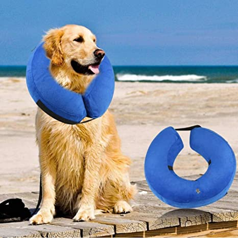 Z- overlord - Collar Hinchable para Perro, Gato, Suave, protección ...