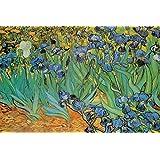 Vincent Van Gogh Garden of Irises Art Print Poster - 24x36 Poster Print by Vincent van Gogh, 36x24 Poster Print by Vincent van Gogh, 36x24