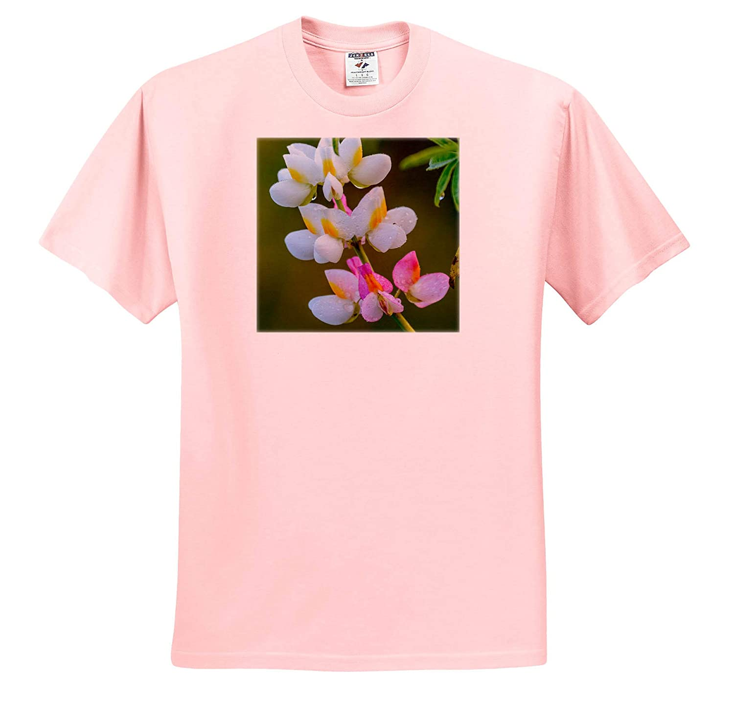- Adult T-Shirt XL Flowers 3dRose Danita Delimont Wildflower Ethiopia ts/_310420 Bale Mountains National Park