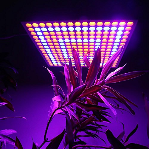 Derlight-Led-Grow-Light65w-Plant-Growing-lamp-with-Red-Blue-Spectrum-for-Hydroponic-Indoor-Plants-and-Flower-Growing85-265v-with-Hanging-Kit-65W