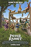 #6: Peter Rabbit - Authentic Original 27