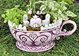 Georgetown Home & Garden, Fiddlehead Fairy Garden, Pink Teacup Planter and Accessory Set. Includes Pink Teacup Planter, Micro Pink Tea Table with White Chairs, and Micro Fairy in Pink Dress. Review