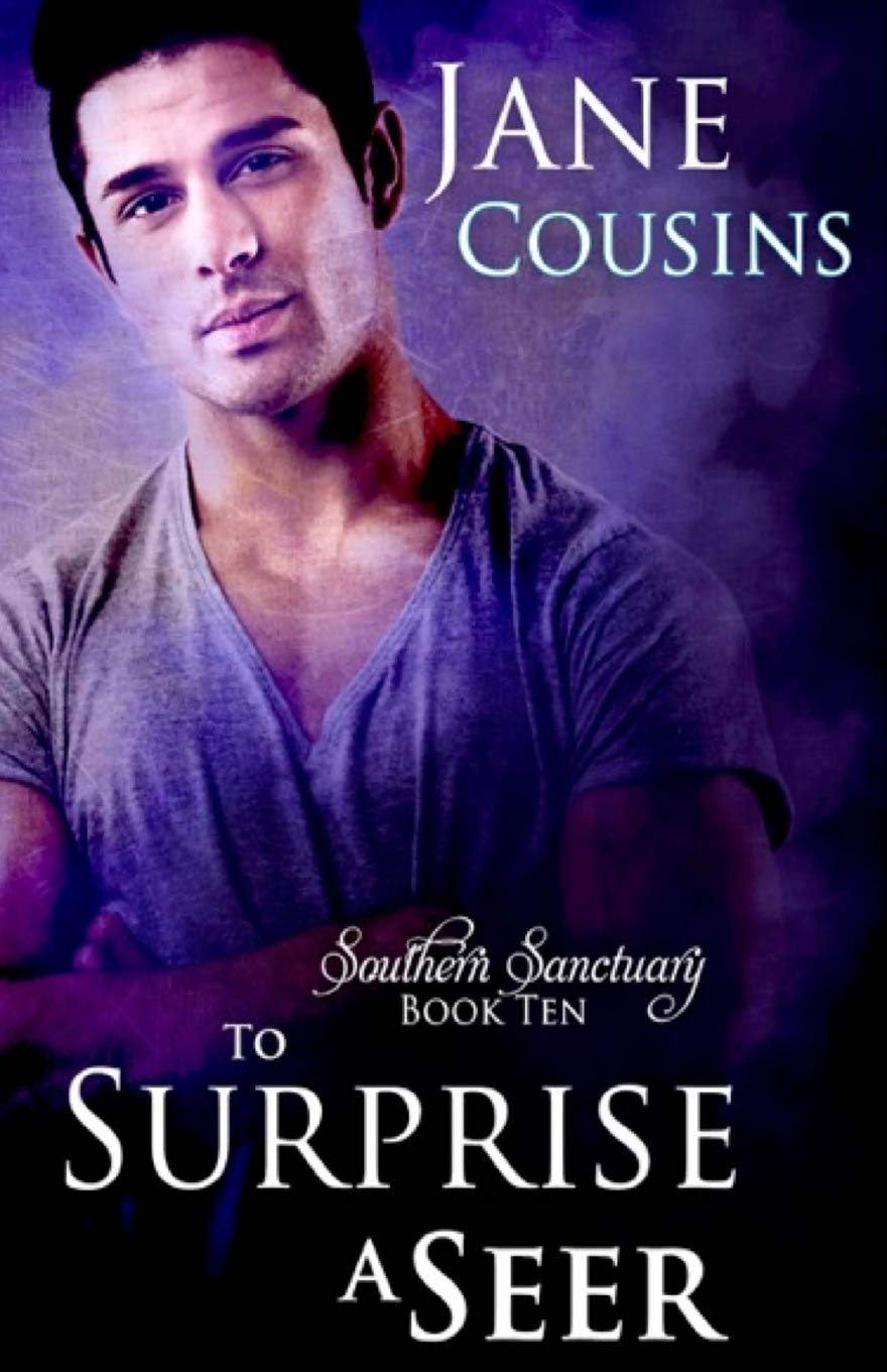 To Surprise A Seer (Southern Sanctuary) (Volume 10) ebook
