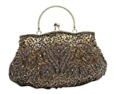 VOCHIC Womens Floral Beaded Top Handel Evening Party Frame Clutch Purse Wallet Handbag-Metal Grey