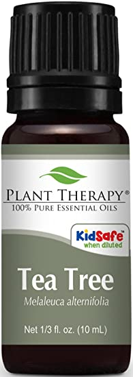 Plant Therapy Tea Tree Oil