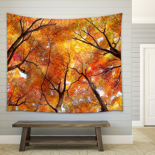 Maple tree in autumn Fabric Wall Tapestry