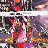 Crashkurs [German Import] by Son Goku (2002-07-29)