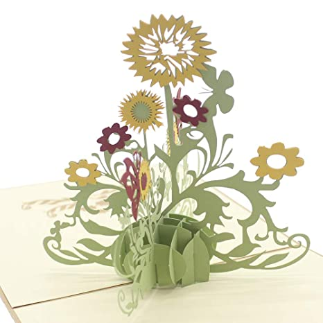 Amazon.com: Lindo estrella girasol 3d Pop Up Tarjetas de ...