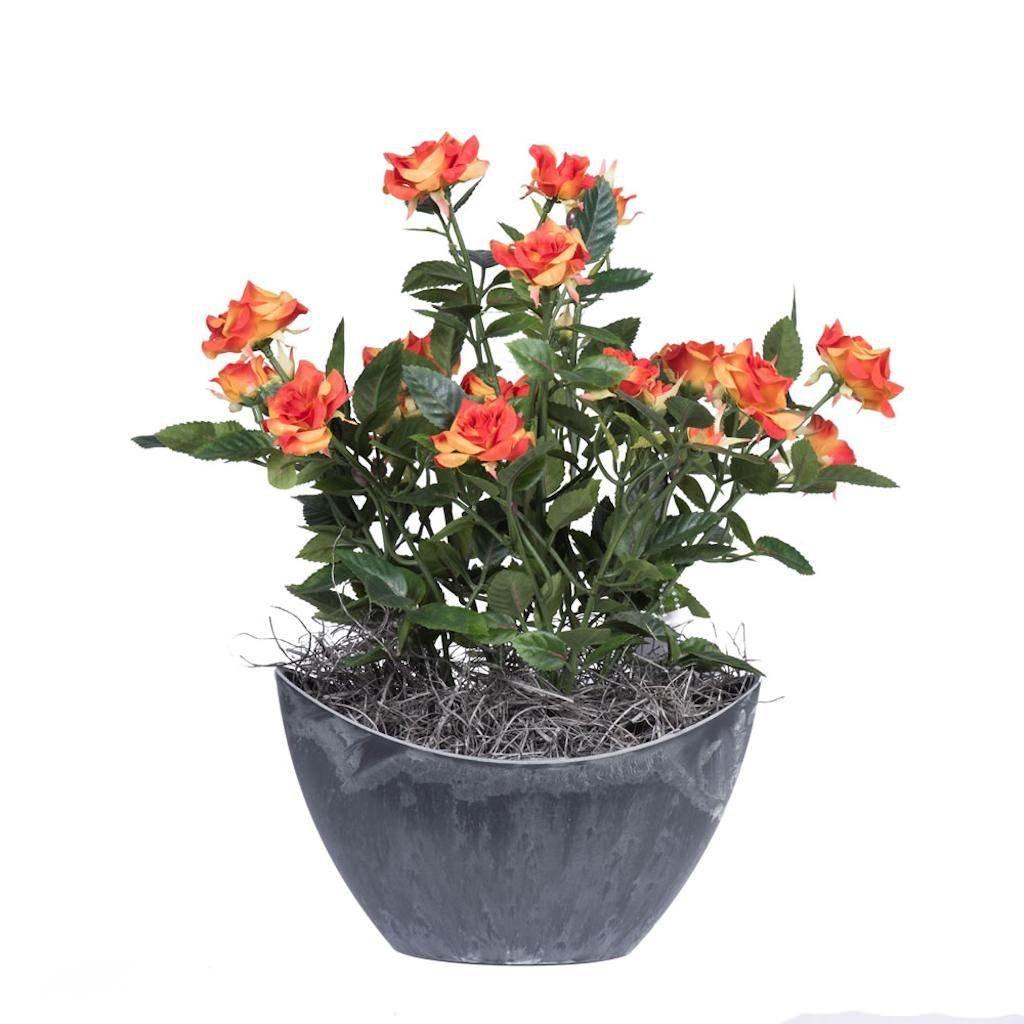 Vickerman F12230 Orange Rose Everyday Floral