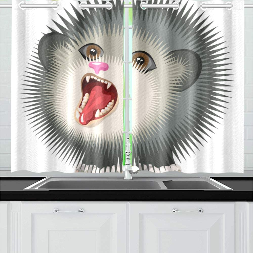 Plsdx Angry Monster Hedgehog Cat Kitchen Curtains Window Curtain Tiers For Cafe Bath Laundry Living Room Bedroom 26x39inch 2pieces Amazon Co Uk Kitchen Home