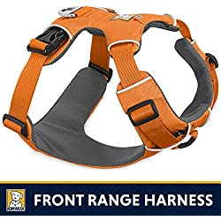 RUFFWEAR - Front Range No-Pull Dog Harness with Front Clip, Orange Poppy, Small