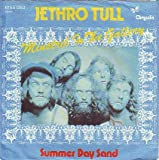 Jethro Tull: Minstrel In The Gallery [Vinyl]