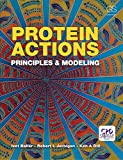 Protein Actions: Principles and Modeling