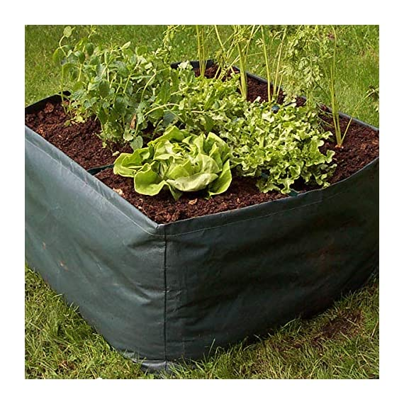 """Apipi raised garden planter fabric bed, 4 divided grids durable square planting grow pot for carrot onion herb flower… 5 made of eco-friendly polypropylene material, waterproof, heat and cold resisting(-94℉ to 320℉). 4 grids garden bed - this plastic planting garden bed has 4 divided grids, 11. 8""""(l)*11. 8""""(w)*9. 8""""(h) for each grid. There are some drain holes on bottom, helpful for planter growth. Great for seedling growing and planting - this raised garden bed is good for seedlings and planters growth, works with any material pot or planter. Cube square allows it to be placed on any flat surface, rooftop, patio, urban gardens, concrete, etc.."""