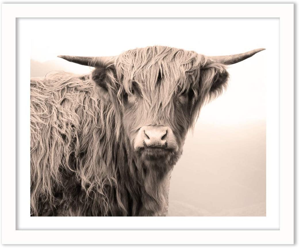Humble Chic Highland Cow Farm Animal, 16x20 Horizontal Framed Wall Decor - Fine Art Travel Picture Poster Prints in White Frame for Home Decorations Living Dining Room Bedroom Bathroom Office
