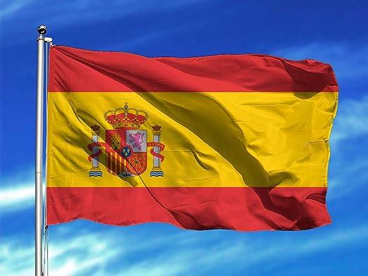 Oedim Bandera de España 85x150cm | Reforzada y con Pespuntes | Bandera con 2 Ojales Metálicos y Resistente al Agua: Amazon.es: Hogar