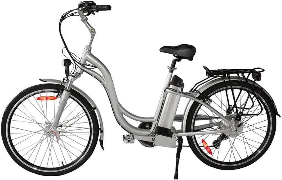 Batería E para bicicleta 24 V 10,4 AH Li-ion E-Bike batería Pack se adapta para Profete, Alurex, Aldi, Prakatiker, Hagebaumarkt (no para Ruhrwerk y Tchibo), con cargador, batería eléctrica para bicicleta hecha