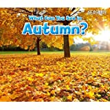 What Can You See In Autumn? (Seasons)