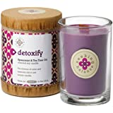 Root Candles Scented Soy Candle in Detoxify (Spearmint & Tea Tree) 6.5 oz