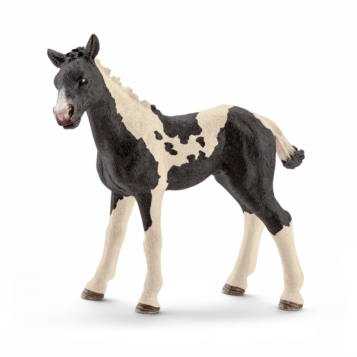 Schleich - 13803 - Figurine - Poulain Pinto
