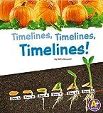 Timelines, Timelines, Timelines!, Kelly Boswell, 1476502617
