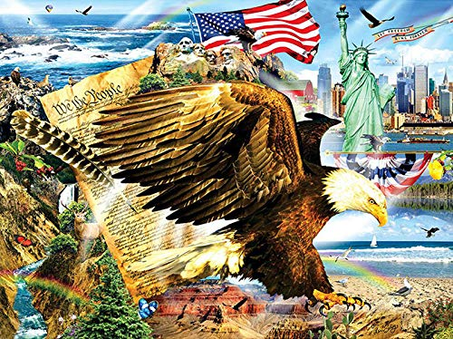 DIY 5D Diamond Painting by Number Kits, Crystal Rhinestone Diamond Embroidery Paintings Pictures Arts Craft for Home Wall Decor,American Flag Eagle 12x16 Inch (Eagle Embroidery Flag)