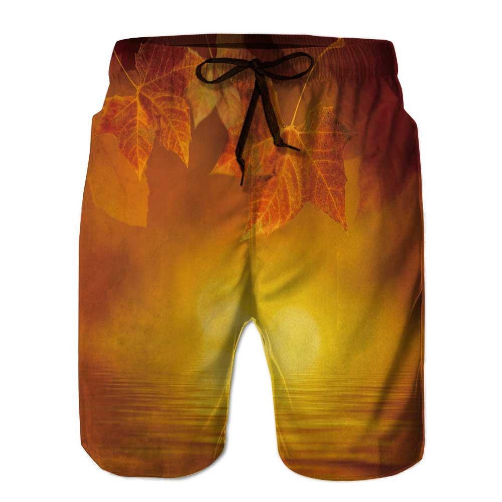 aolankaili Mens Swim Trunks,Climbers in The Swiss Alps Quick Dry Board Shorts