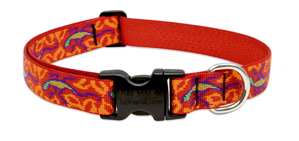 Lupine 1-Inch Wide Adjustable Collar for X-Large Dogs, Fits 25 to 31-Inch Neck Size, Go Go Gecko
