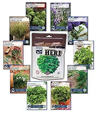Culinary Herb Seed Collection, 10 Variety - 100% NON GMO Heirloom Basil, Chives, Cilantro, Dill, Lavender, Oregano, Parsley, Rosemary, Sage, and Thyme Herb Seeds